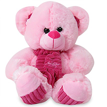 Huggable Pink Soft Toy