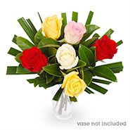 bouqet of roses half dozen mix