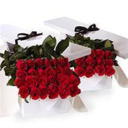 Flat boxes roses three dozen red