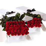 Flat boxes roses three dozen red