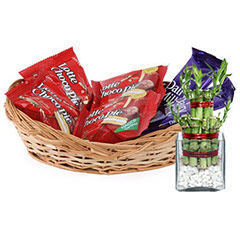 Chocolates & Lucky Bamboo - Diwali Gifts
