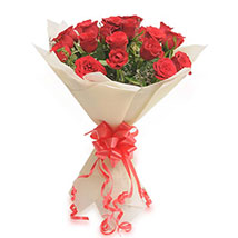 20 Red Roses EXDFNP527