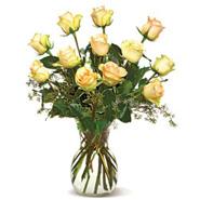 A Dozen Cream Roses-CND