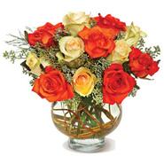 Harvest Moon Roses-CND
