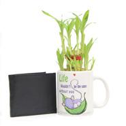 Wallet Mug Lucky Bamboo