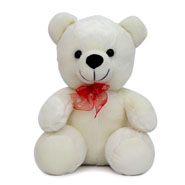 White Teddy Soft Toy