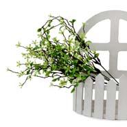 Asparagus Flower Sticks