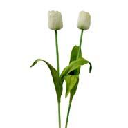 Tulip Flower Sticks
