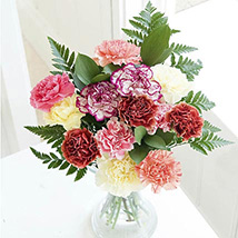 Simply carnations
