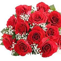 Florists Choice - One Dozen Roses-SGPR