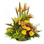 Basket of Mixed Flowers -MAL