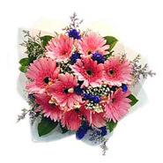 10 Pink Gerberas Bouquet-MAL