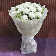 Joyful Carnation