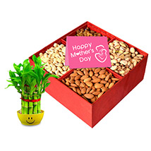 Dry fruit Delights for Mom