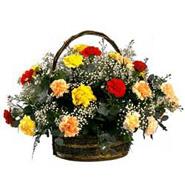 Rainbow Carnation Basket-SA
