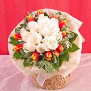 Tulip Roses