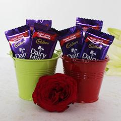 Choco Buckets n Rose