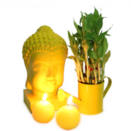 Alluring Buddha Combo