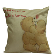 You N Me Cushion