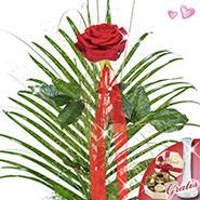 Flower arrangement with vase & Lindt Rose Kiss chocolates